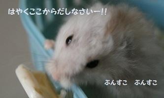 ten0125-2.jpg